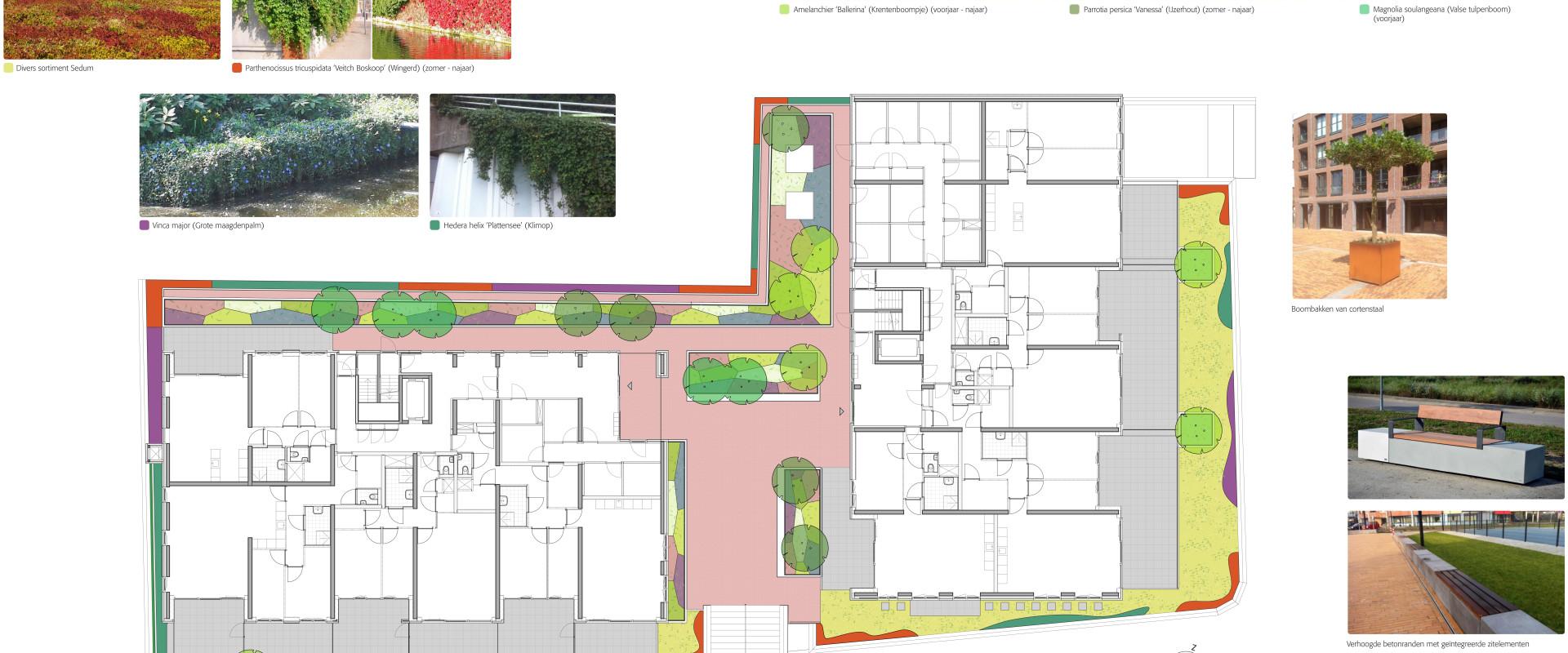Beplantingsplan Oude Haagweg