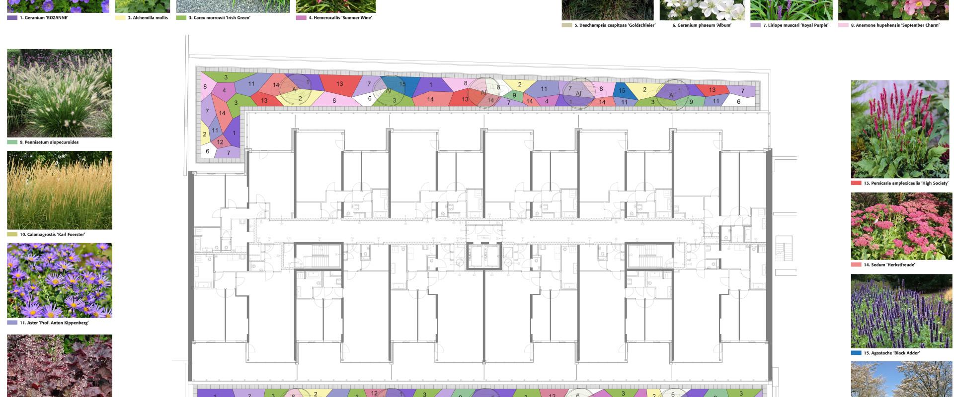 190211 Beplantingsplan Coolsingel verdieping 2
